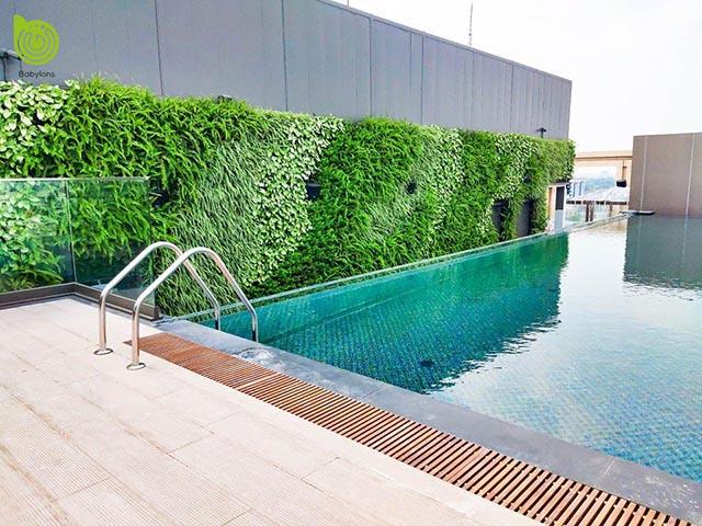 Thi công Vườn đứng Khách sạn 5 sao Hanoi Grand Mercure tại số 9 Cát Linh