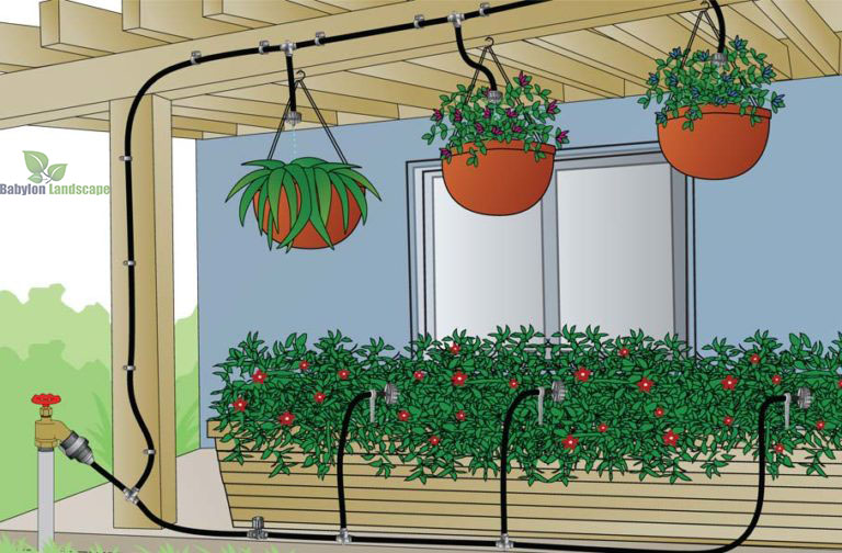 Lắp đặt hệ thống tưới nhỏ giọt cho ban công nhà bạn